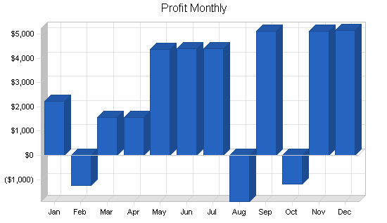 Airport shuttle business plan, financial plan chart image