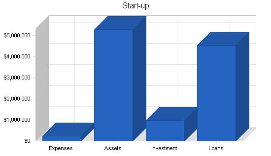 Amusement park business plan, company summary chart image