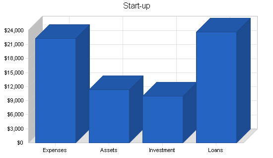 Automated accounting business plan, company summary chart image