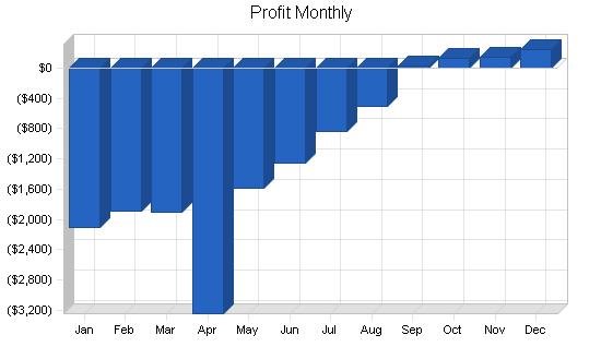 Bicycle manufacturer business plan, financial plan chart image