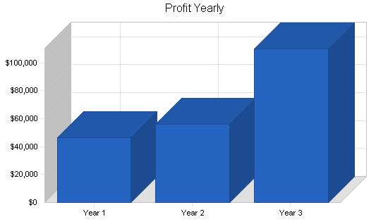 Computer programming business plan, financial plan chart image