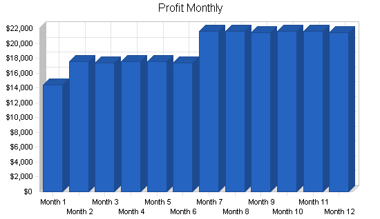 Diaper manufacturer business plan, financial plan chart image
