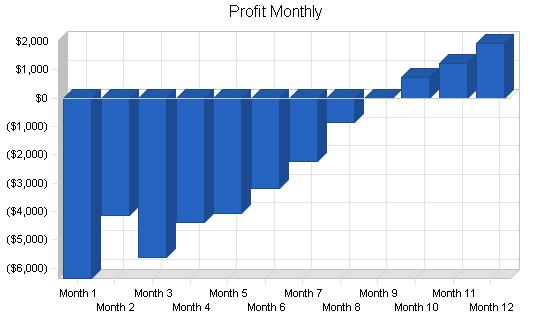 Sbp, electronics retailer business plan, financial plan chart image