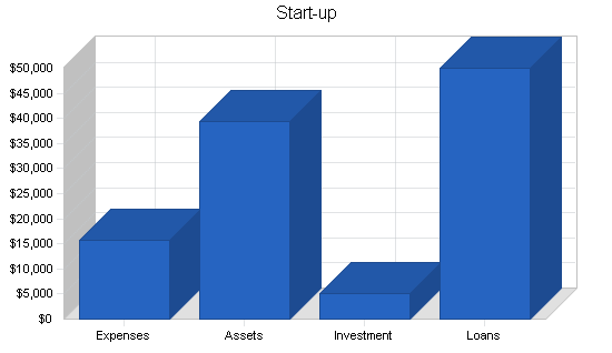 Sbp, electronics retailer business plan, company summary chart image