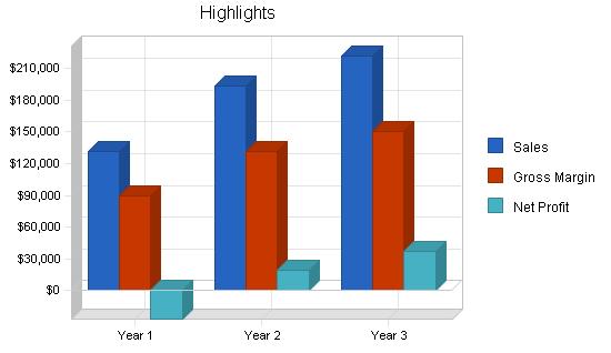 Sbp, electronics retailer business plan, executive summary chart image