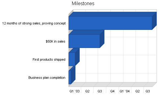 Sbp, electronics retailer business plan, strategy and implementation summary chart image