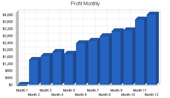 Gymnastics instruction business plan, financial plan chart image