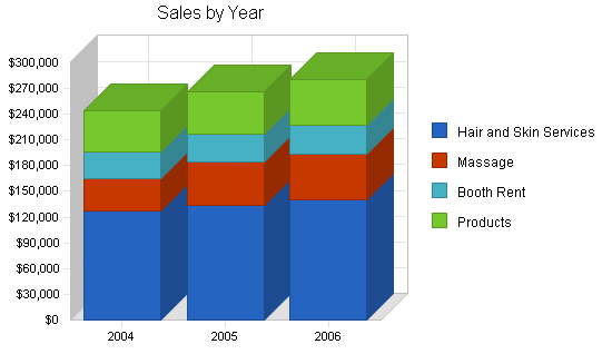 Hair replacement and salon business plan, strategy and implementation summary chart image