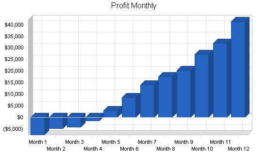 Health club business plan, financial plan chart image