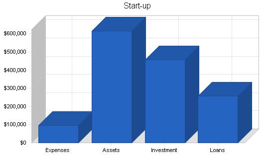 Holding company business plan, company summary chart image