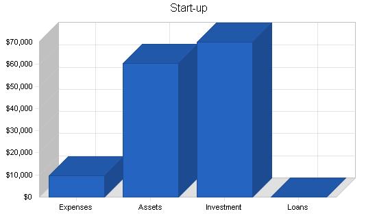 Internet isp wireless business plan, company summary chart image