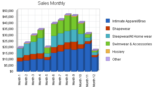 Lingerie retail clothing store business plan, strategy and implementation summary chart image