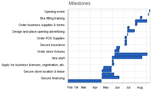 Lingerie shop business plan, strategy and implementation summary chart image