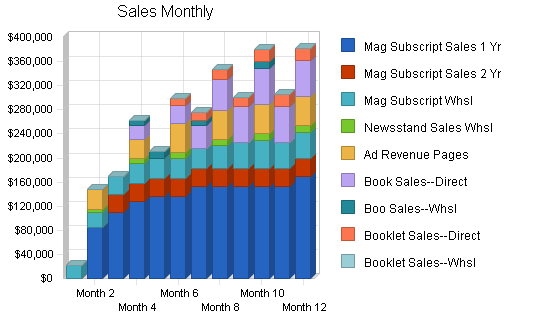 Magazine publisher business plan, strategy and implementation summary chart image