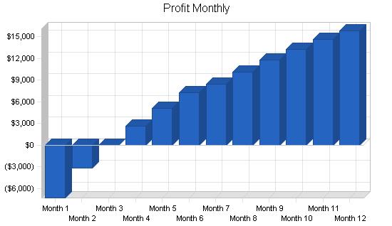 Martial arts school business plan, financial plan chart image