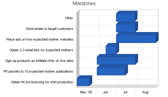 Maternity clothing online business plan, strategy and implementation summary chart image