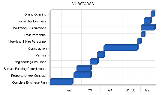 Miniature golf course business plan, strategy and implementation summary chart image