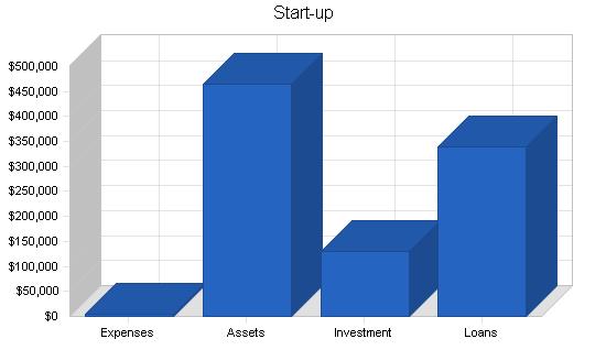 Mopeds rental business plan, company summary chart image