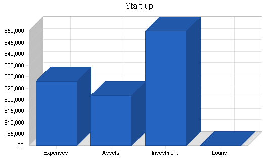 Newsletter publishing business plan, company summary chart image