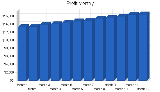 Paintball products retail business plan, financial plan chart image