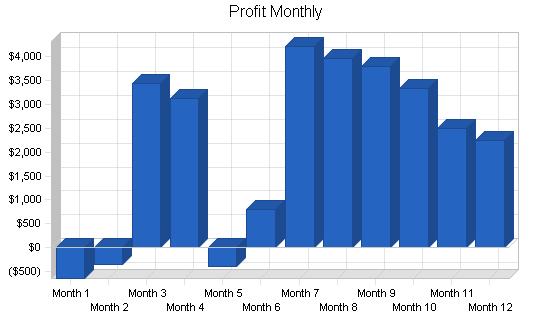 Pet photography business plan, financial plan chart image