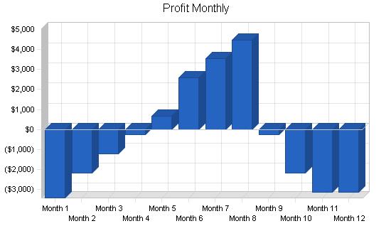 Real estate broker business plan, financial plan chart image