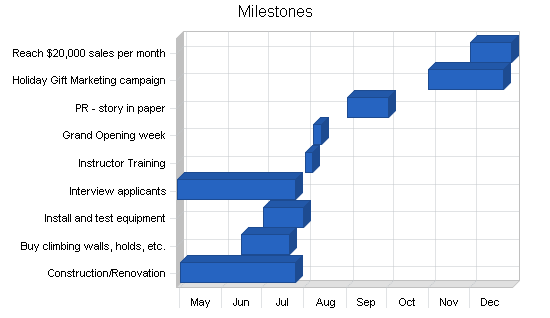 Rock climbing gym business plan, strategy and implementation summary chart image