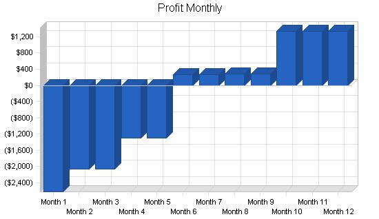 Scrapbooking store business plan, financial plan chart image