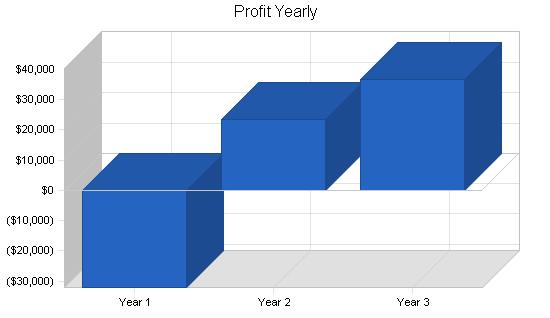 Skate park skiing business plan, financial plan chart image