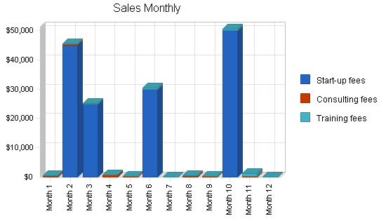 Software sales business plan, strategy and implementation summary chart image