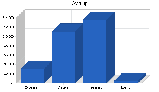 Software sales business plan, company summary chart image