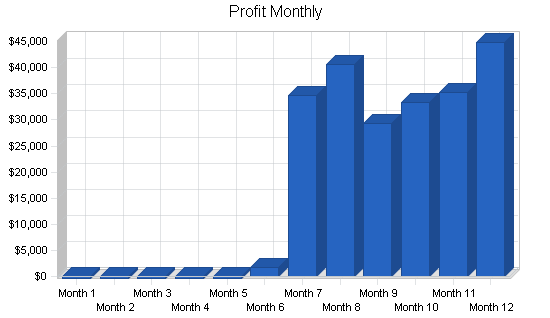 Steak restaurant business plan, financial plan chart image