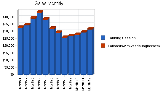Tanning salon business plan, strategy and implementation summary chart image