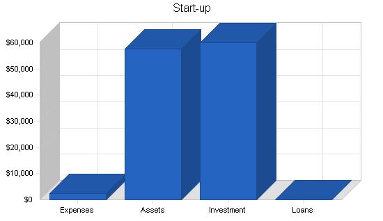 Travel agency business plan, company summary chart image