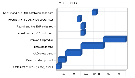 Voice recognition software business plan, strategy and implementation summary chart image