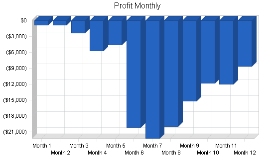 Wireless datacomm business plan, financial plan chart image